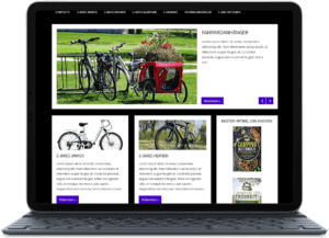 Nischenseite kaufen zum Thema E-Bikes